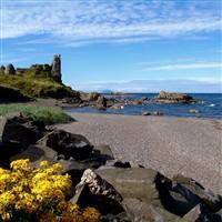 Ayreshire Island Duet - North Yorkshire