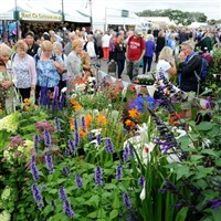 Southport Flower Show or Southport only